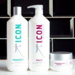 Pack ICON Antioxidants Fully 1 Litro + Proshield 1 Litro + Transformational Infusion